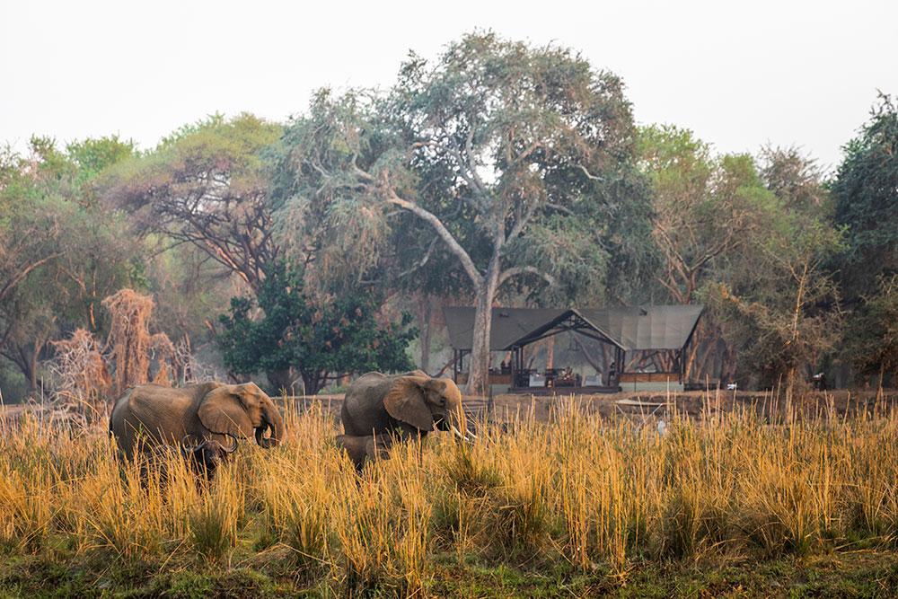 Lodge photography Zambia Teagan Cunniffe_OldMondoro