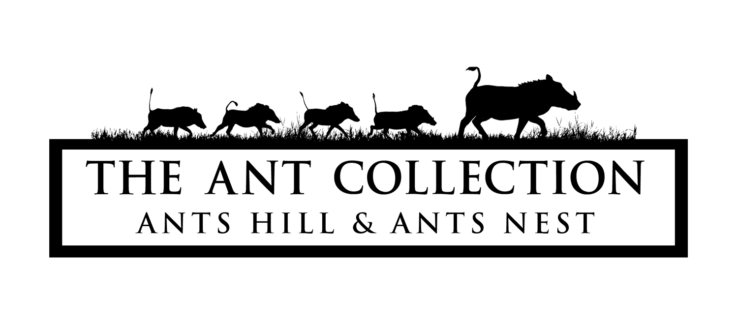 ants-collection-logo-square