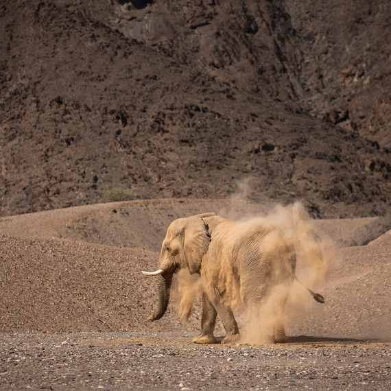 Lodge photography Namibia Teagan Cunniffe