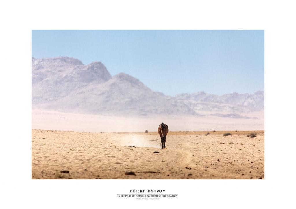 Namibia Wild Horses prints